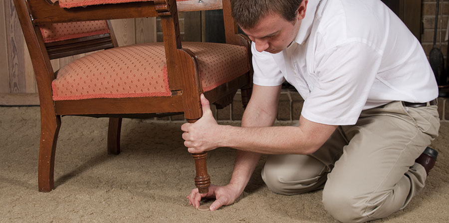 Residential | San Mateo Carpet Cleaning